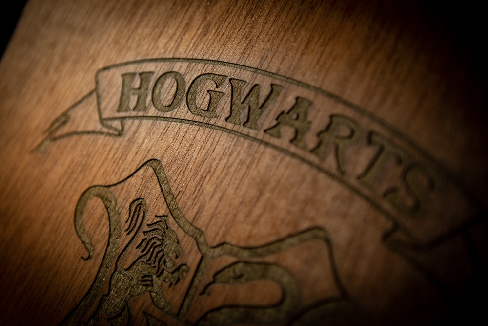 Harry Potter – Hogwards Escudo