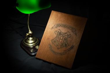 Harry Potter – Hogwards Escudo